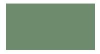 Logo Carbon Free